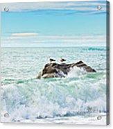 Tasman Sea Acrylic Print