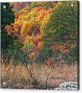 Taum Sauk Mountain Glade IIi Acrylic Print