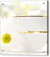 Teacup Filled With Sunshine Acrylic Print by Kim Fearheiley