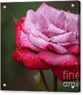 Tears From Heaven Acrylic Print