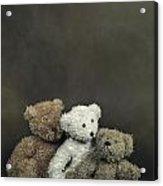 Teddy Bear Family Acrylic Print