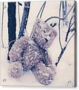 Teddy In Snow Acrylic Print