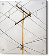 Telephone Pole And Electric Cables Acrylic Print