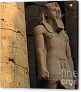 Temple Of Luxor  Egypt Acrylic Print