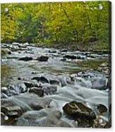 Tennessee Stream 6031 Acrylic Print