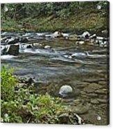 Tennessee Stream 6049 Acrylic Print