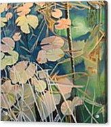 Tennessee Swamp Acrylic Print