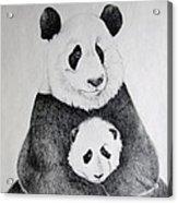 Terris Pandas Acrylic Print