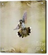 Textured Angel Acrylic Print