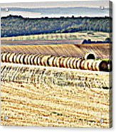 Textured Fields Of France Acrylic Print