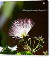 Thank You For Being There Acrylic Print
