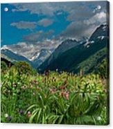 The Alpine Meadows Acrylic Print