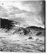 The Beach At Bridgehampton Acrylic Print