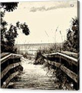 The Beach Path - Clearwater Beach Acrylic Print