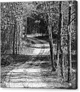 The Beaten Path Acrylic Print