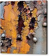The Beauty Of Aging Acrylic Print