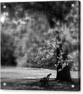 The Bench In The Park Acrylic Print
