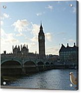 The Big Ben And Dove Acrylic Print