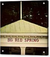 The Big Red Spring Acrylic Print by Lisa Russo