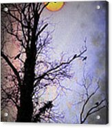 The Black Crows Acrylic Print