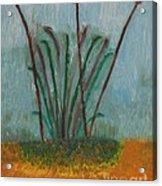 The Bog Pond Acrylic Print
