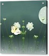 The Butterfly In The Moonlight Acrylic Print