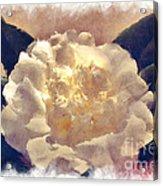 The Camillia Acrylic Print