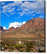 The Chisos Mountains Big Bend Texas Acrylic Print