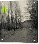 The Circle Green - Bare Walkin Trail Acrylic Print