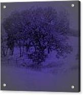 The Circle Violet Tree Acrylic Print