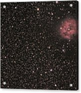 The Cocoon Nebula Acrylic Print