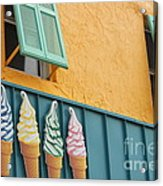 The Color Of Cones Acrylic Print