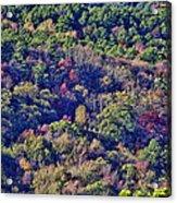The Colors Of Autumn Acrylic Print by Douglas Barnard