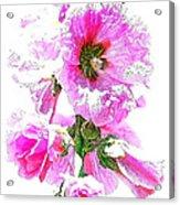 10989 The Colour Of Summer Acrylic Print