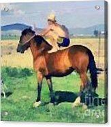 The Cowboy Acrylic Print by Odon Czintos