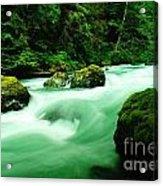 The Dosewallups River  Acrylic Print