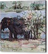 The Elelphant Acrylic Print