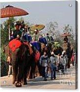 The Elephant Parade Acrylic Print