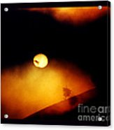The End Of Reason Acrylic Print by Susanne Still
