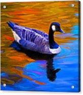 The Fall Goose Acrylic Print by Suni Roveto