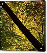 The Fall Split Acrylic Print