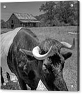 The Farm Acrylic Print