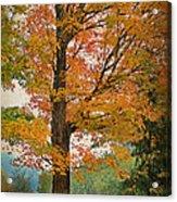 The Fay Tree Acrylic Print