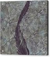 The Feather Acrylic Print
