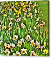 The Flower Bed Acrylic Print
