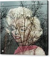 The Ghost Of Norma Jean Acrylic Print