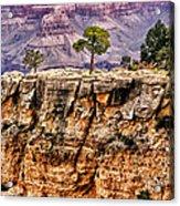 The Grand Canyon Iv Acrylic Print
