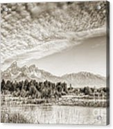The Grand Tetons In Jackson Wyoming Acrylic Print