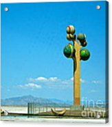 The Great Salt Lake Utah Acrylic Print
