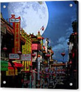 The Great White Egret Of Chinatown . 7d7172 Acrylic Print